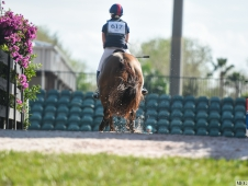 Eventing Showcase